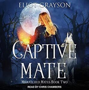 Audiobook Captive Mate