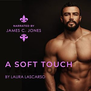 Audiobook A Soft Touch